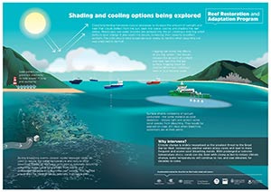 Infographic: Reef shading and cooling options being explored by RRAP - thumbnail