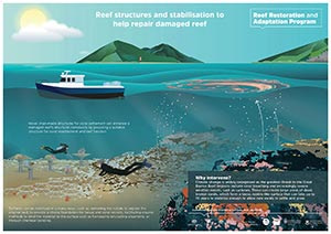 Infographic: Reef structures and stabilisation options being explored by RRAP - thumbnail