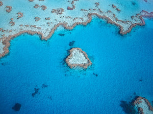 Aerial photo of reef