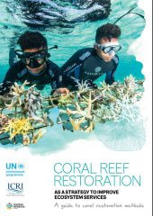 Coral Reef Restoration Guidelines